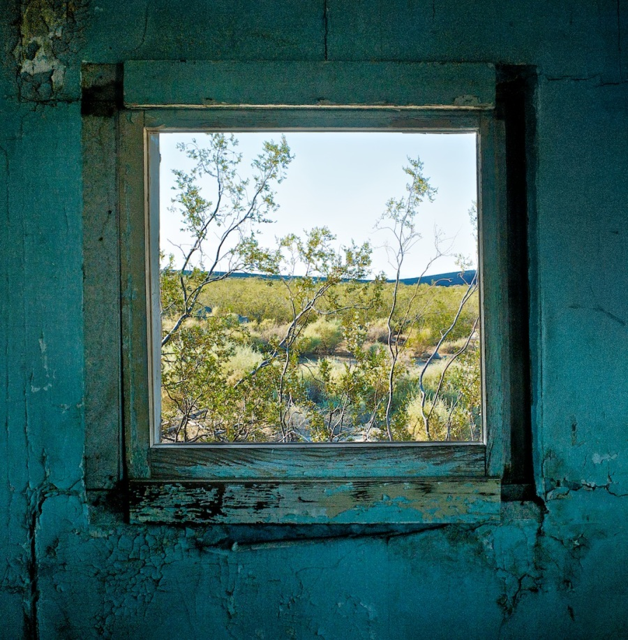 Window with Creosote Bush, Dunmovin, California (2010)