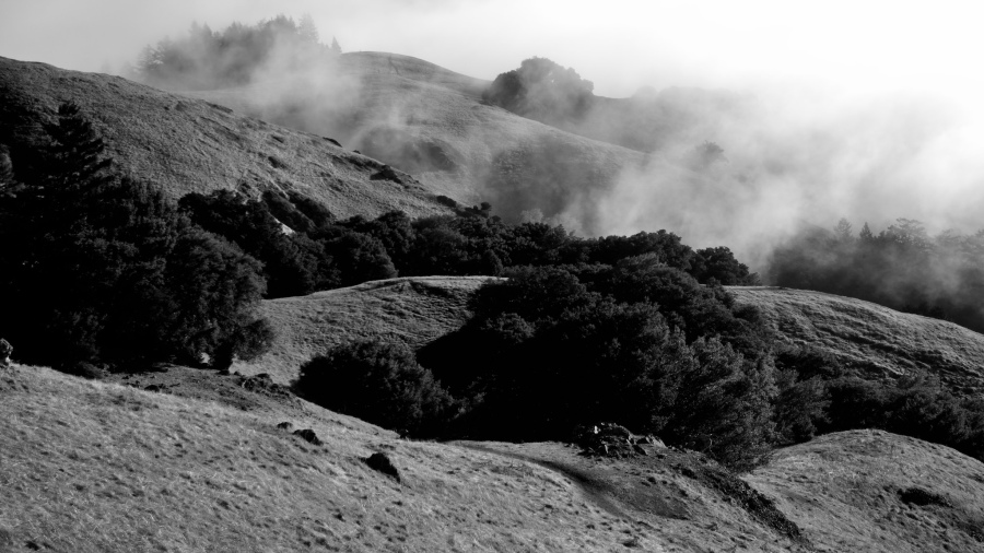 Mt Tamalpais 18 via Flickr user Tom Hilton.