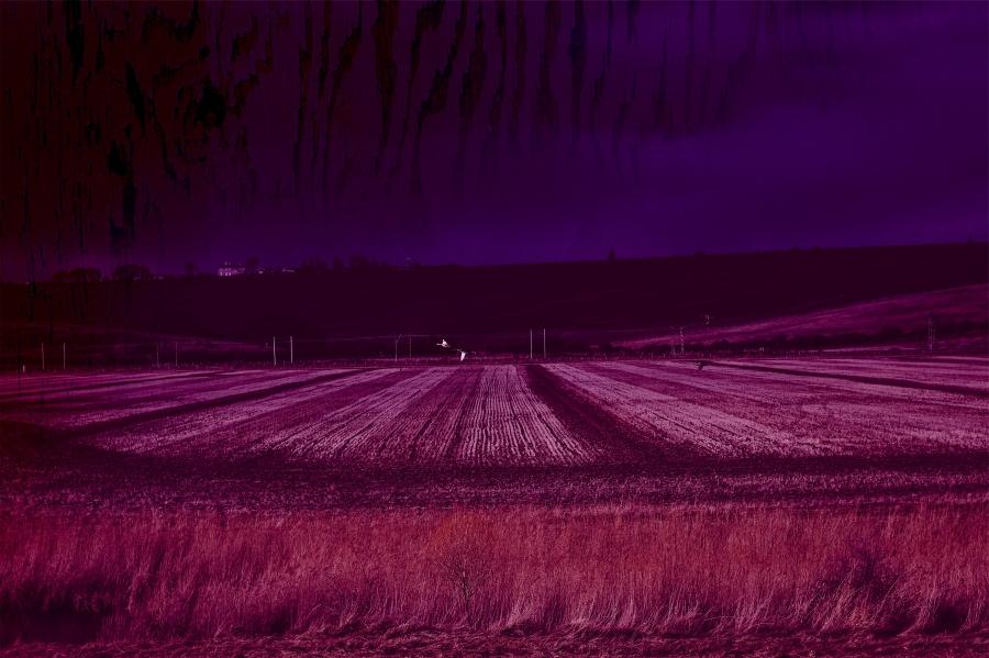 sarah_rural2