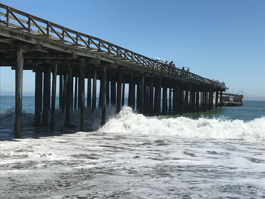 Hammons_Seacliff State Beach